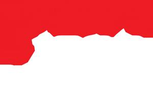 TSN 1200 Logo